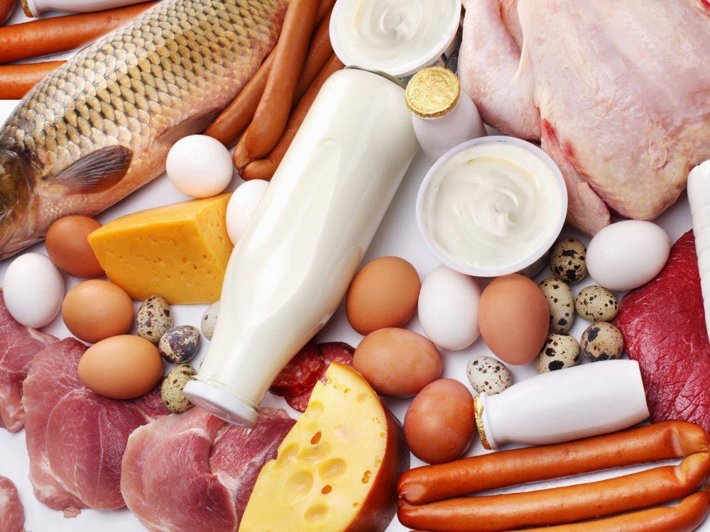 отказ от белковой пищи