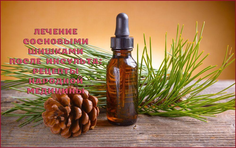 Рецепты лечения после инсульта сосновыми шишками