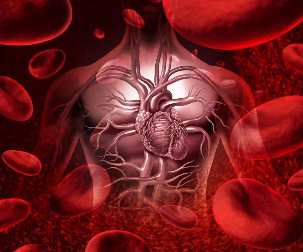 виды приобретенных анемий