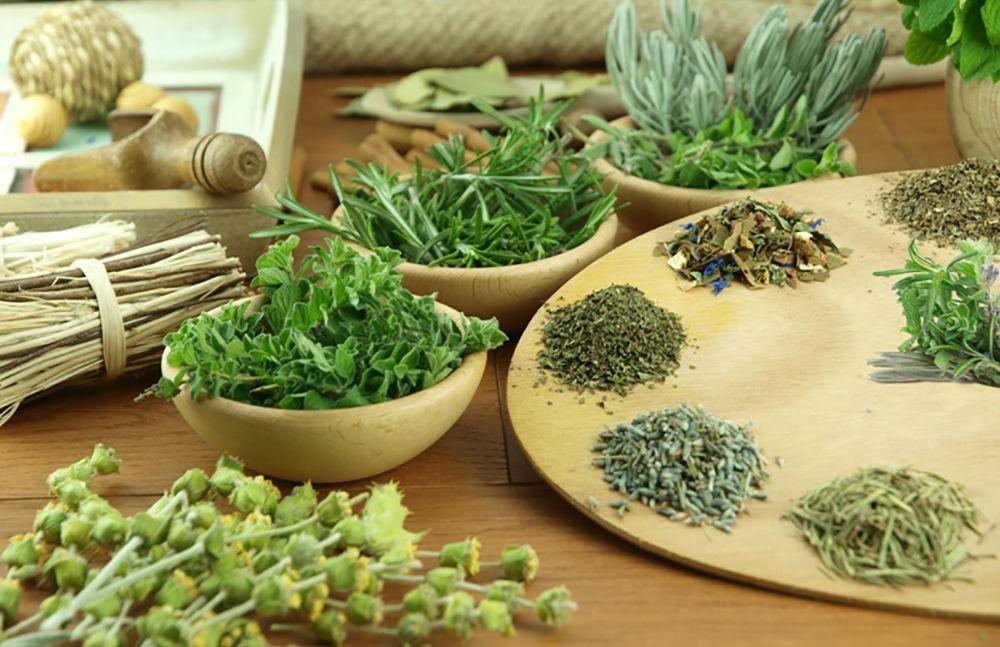 Лечение гипертонии травами