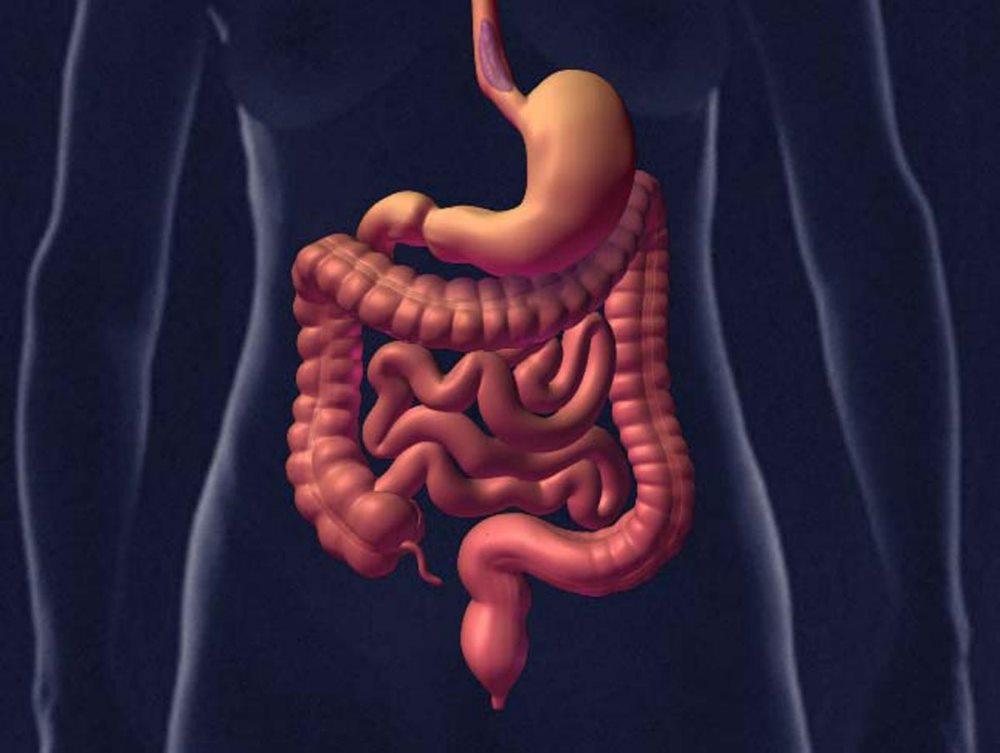 причины тромбоза кишечника