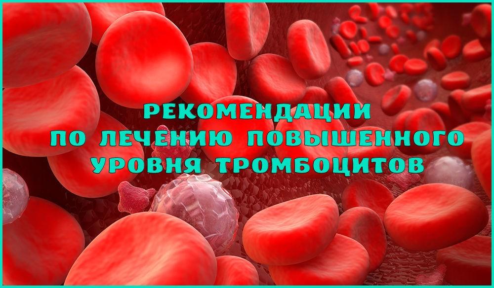 Что делать, если в крови повышены тромбоциты