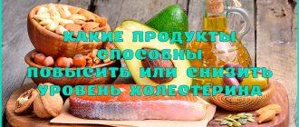 Полезные продукты для повышения или понижения уровня холестерина в крови