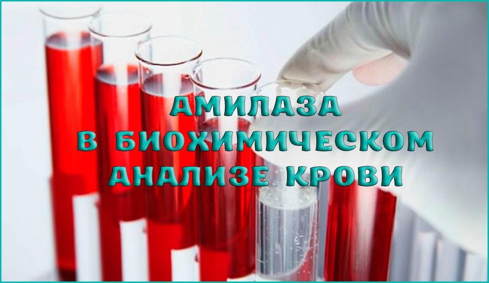 Амилаза в крови и каков уровень этого показателя в норме