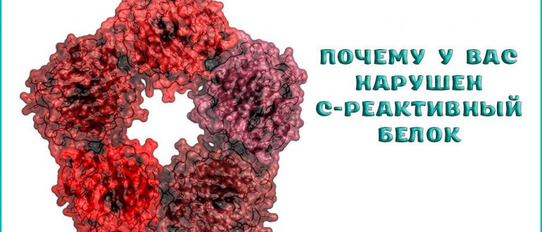 Что такое C-реактивный белок в крови и причины его повышения