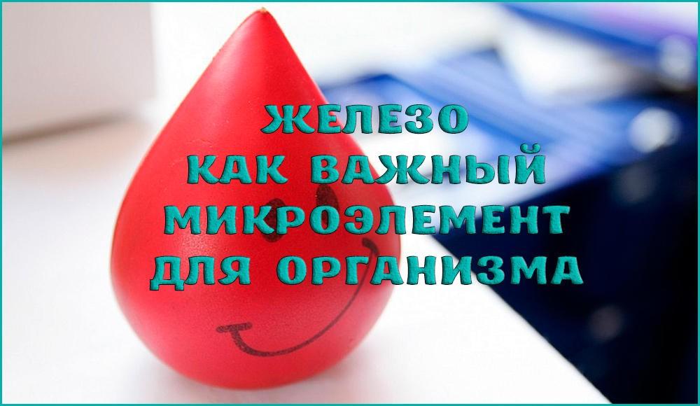 Какая норма железа в крови, как поднять или понизить свой уровень