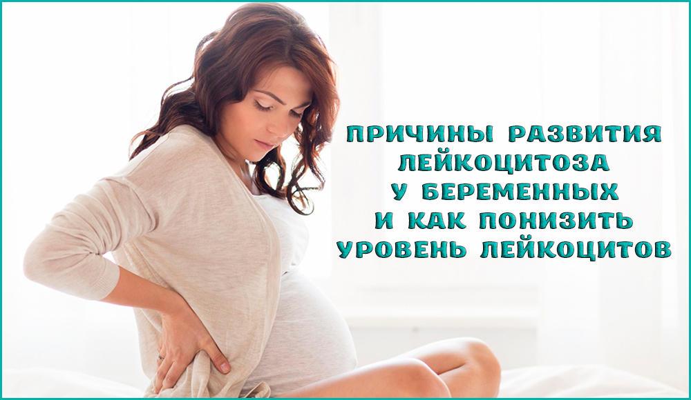 Почему развивается лейкоцитоз у беременных и что делать