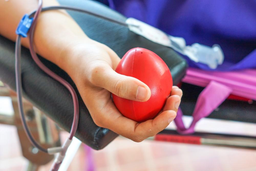 Перед донорством крови